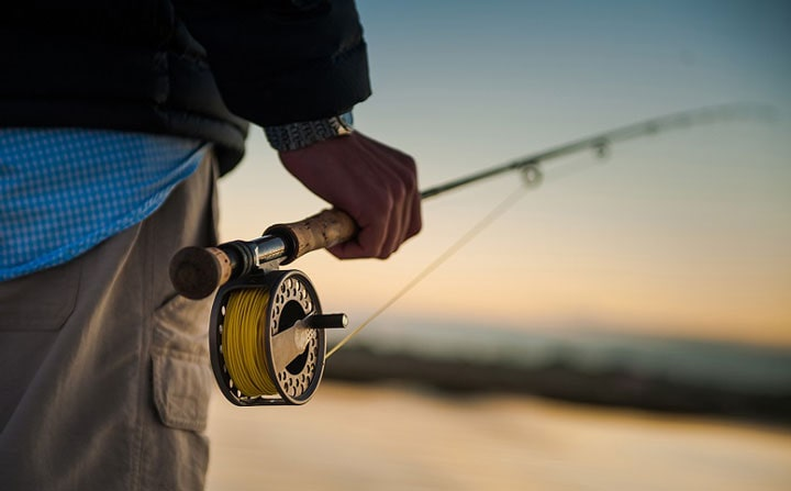 Best Fly Fishing Rod for Beginners