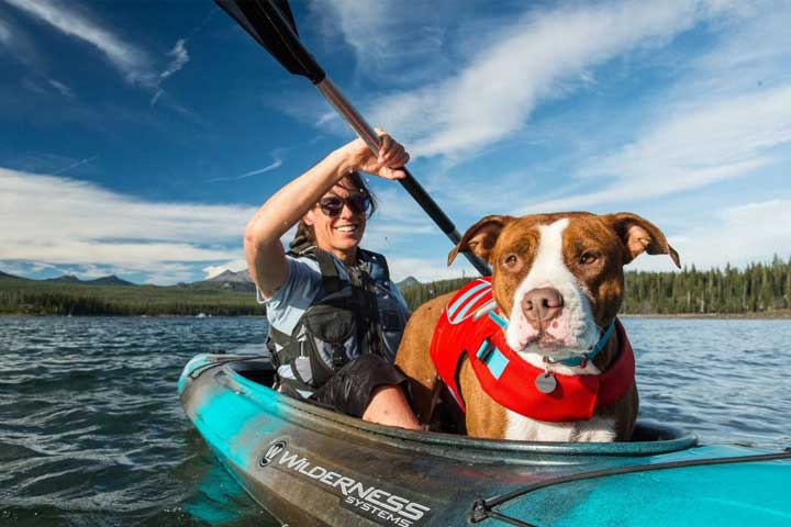 Best Kayak for Dog